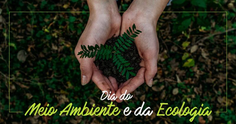 Dia da Ecologia e do Meio Ambiente 2019: O que temos a comemorar?
