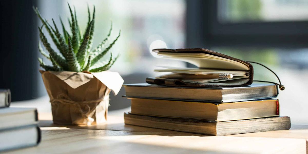 Livros de moda e sustentabilidade: dicas em português para você ler